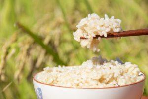 母乳の質を低下させる!栄養価の高い玄米が授乳中はNGって本当?